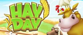 Hay day на компьютер
