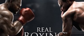 Real Boxing на компьютер