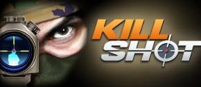 Kill Shot на компьютер